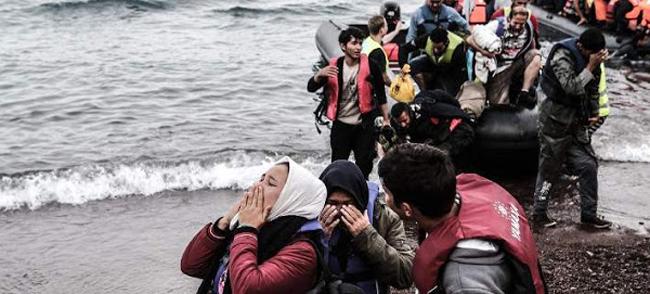 1 στους 2 λαθρομετανάστες ΔΕΝ προέρχεται από την Συρία ή εμπόλεμη ζώνη!