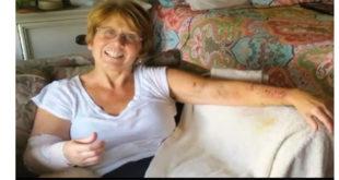 Νταντά έσωσε 3χρονο παιδί από επίθεση 2 άγριων σκύλων! (Βίντεο)