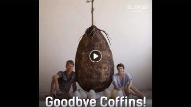 Πείτε αντίο στα φέρετρα! Δείτε τώρα τον νέο τρόπο ταφής όπου ο αποθανών γίνεται δέντρο! (Βίντεο)